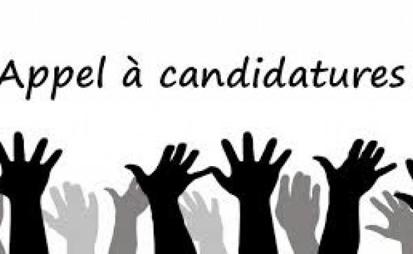 Appels à candidature / Fiches de poste 2021